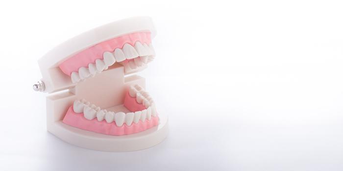 インプラントと差し歯の違いって? 選ぶポイントとは?
