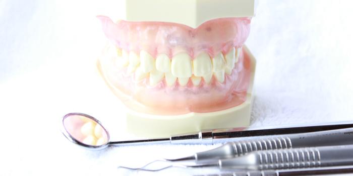 歯周病の予防と治療方法