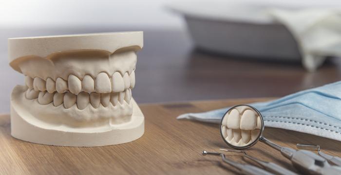 知られざる入れ歯の歴史を解説! 入れ歯が使われたのはいつから?